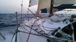 mini509-650-transat-sailing-atlantic (15)